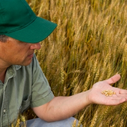 Global Deal Providing Sustainability Solutions to Farmers