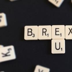 EU Referendum: The Reaction