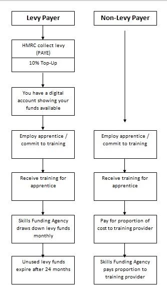 Apprenticeship Levy Diagram