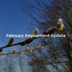 February Employment update